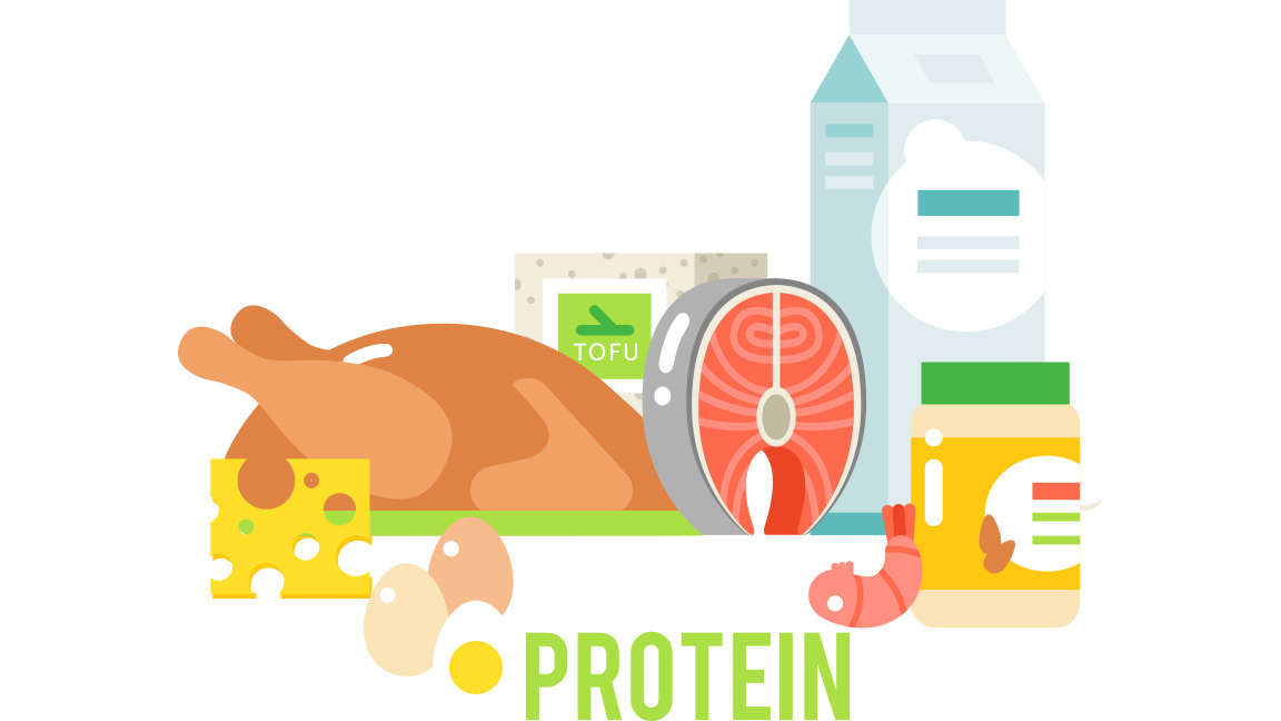 different types of protein