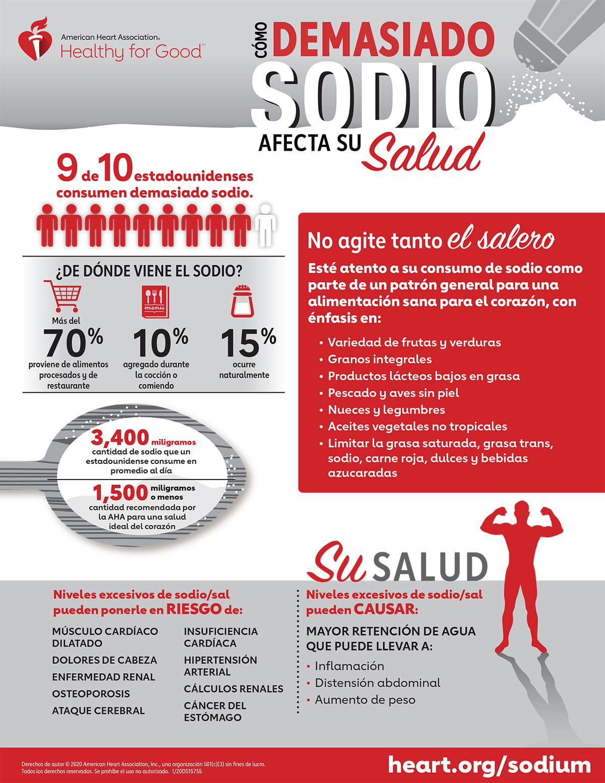 Effects of Excess Sodium Infographic Spanish