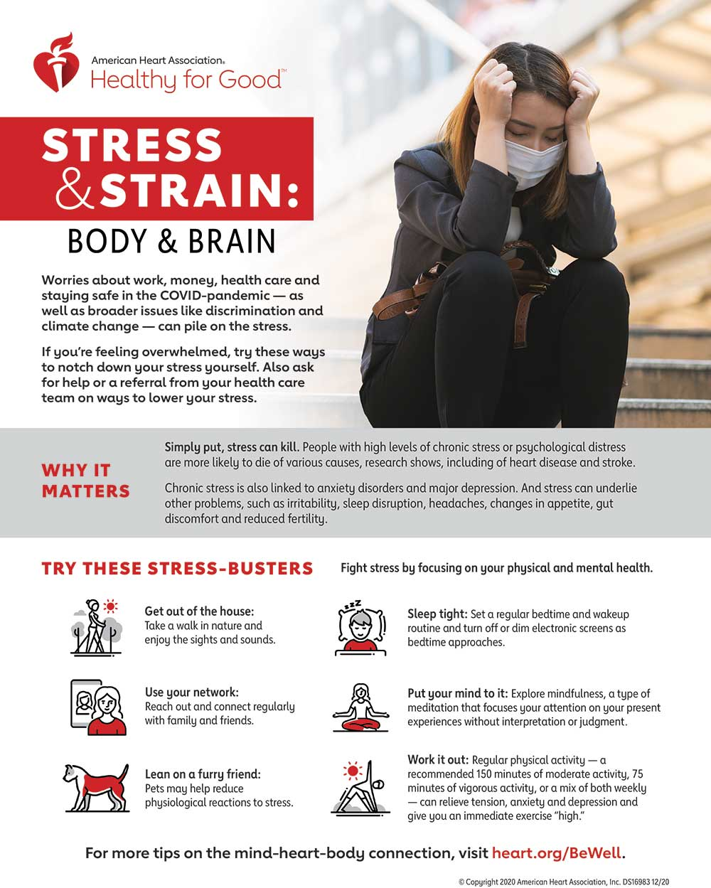 Stress Strain Body Brain Infographic