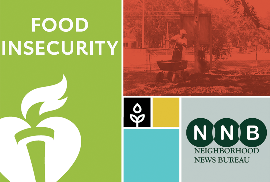 Food Insecurity NNB