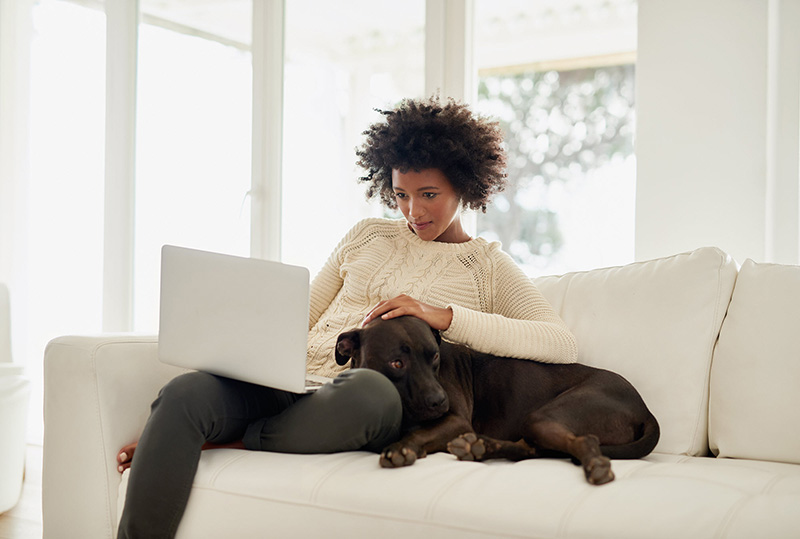 woman using laptop on couch with dog