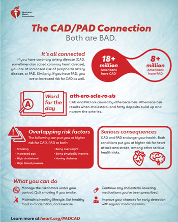 CAD PAD Connection infographic