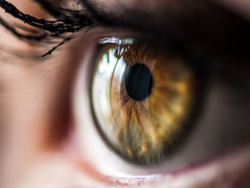 Close-up of woman's eye. (Pixelaway, Envato Elements)
