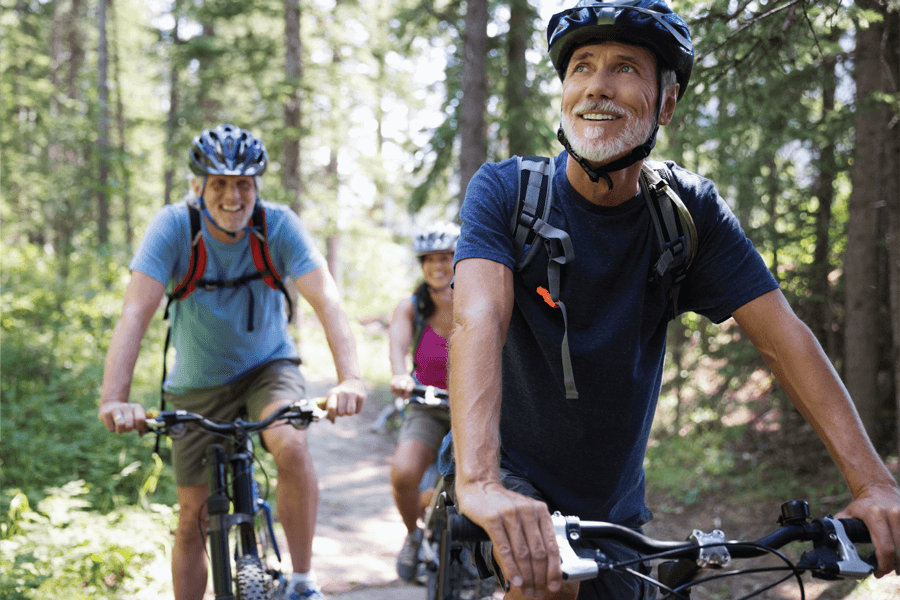 Three adult bicyclists riding through the woods
