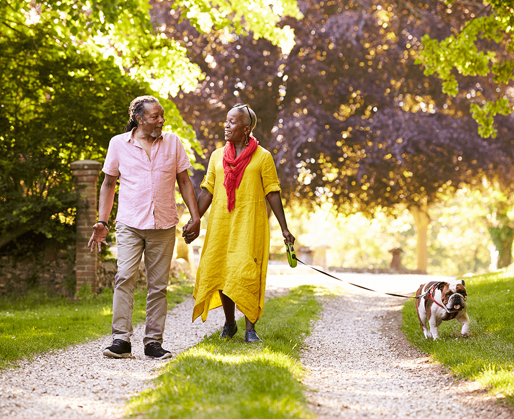 Senior couple walking with pet bulldog down grassy lane